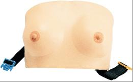 Model piersi w okresie laktacji do masażu Typ III