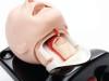 Fantom głowy do intubacji AIRSIM ADVANCE LARYNX
